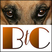 BtC4animals, B.O.L.Weekly, BAD RAP and The Honest Kitchen