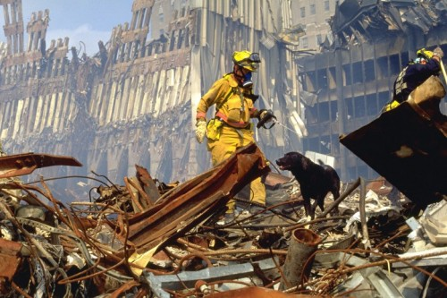 9/11 Dogs: Forever In Their Debt
