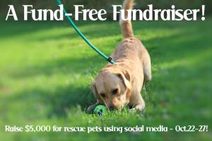 Tweet To Help Rescue Pets #BtC4A